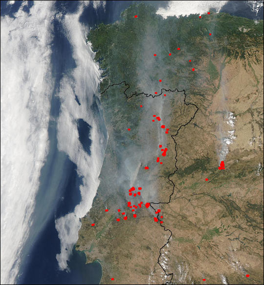 Forest Fires in Portugal