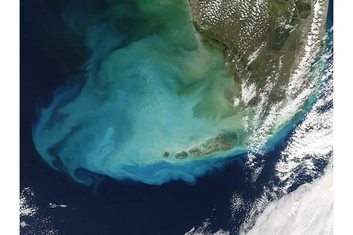 Resuspened bottom sediments off Florida - selected image