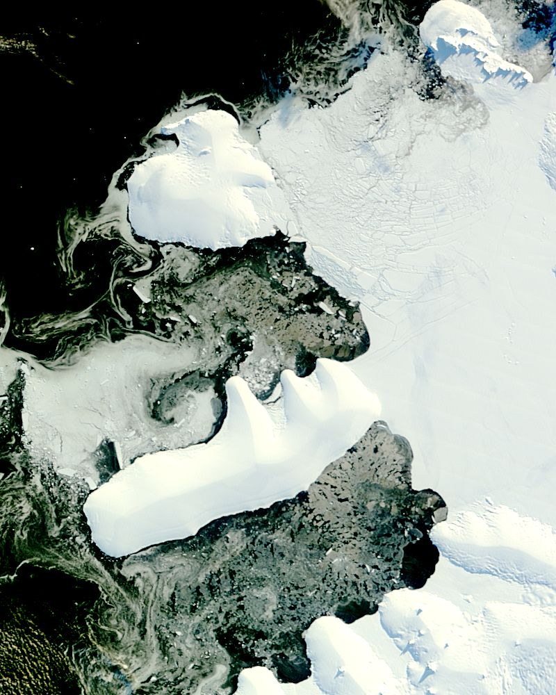 Wilkins Sound, Antarctica - related image preview
