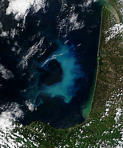 Phytoplankton bloom in the Bay of Biscay - related image preview