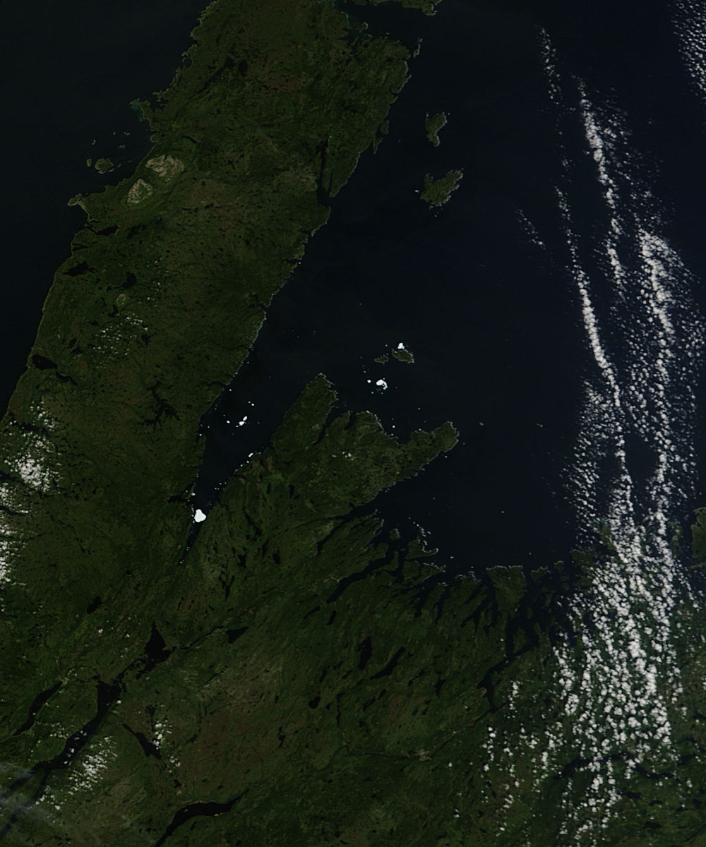 Fragments of Iceberg PII-A in White Bay, Newfoundland - related image preview