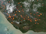 Fires in New Guinea