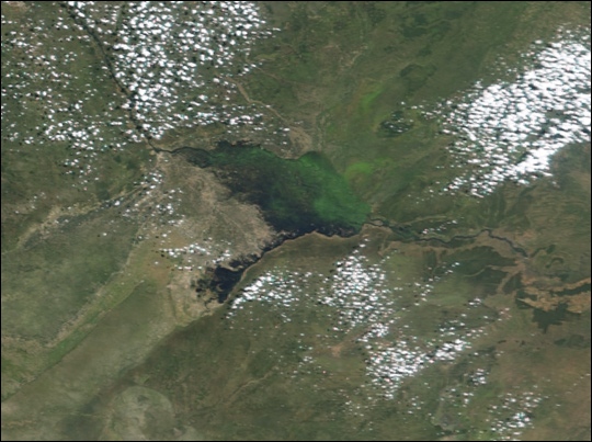 Seasonal floods along the Zambezi River