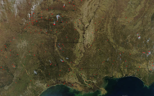 Fires Across Southern United States