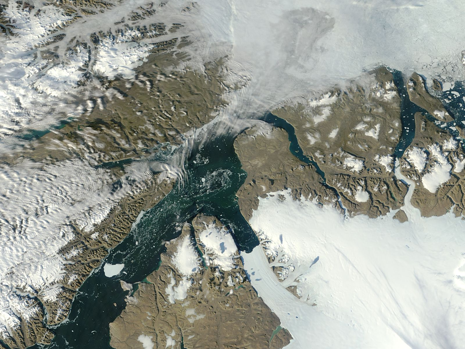 Iceberg from Petermann Glacier, northern Greenland - related image preview
