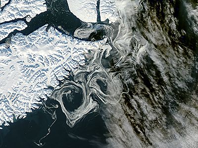 Sea Ice off eastern Greenland - related image preview