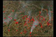 Fires Across West Siberian Plain