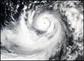 Super Typhoon Dianmu