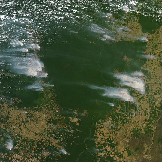 Fires Near Xingu River