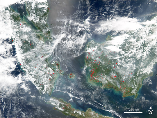 Fires on Borneo and Sumatra