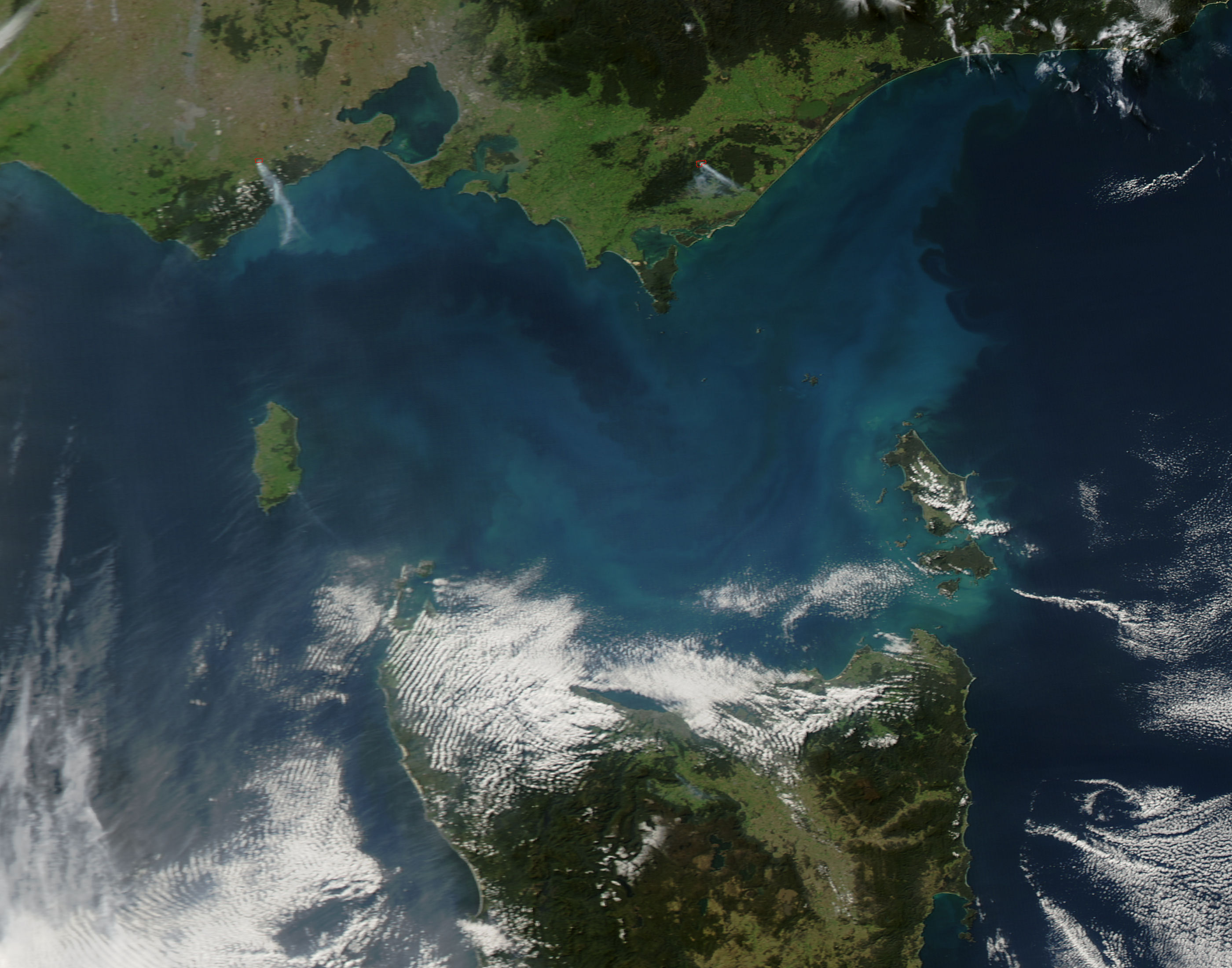 Phytoplankton bloom in Bass Strait, Australia - related image preview