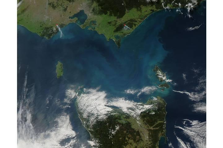 Phytoplankton bloom in Bass Strait, Australia - selected image