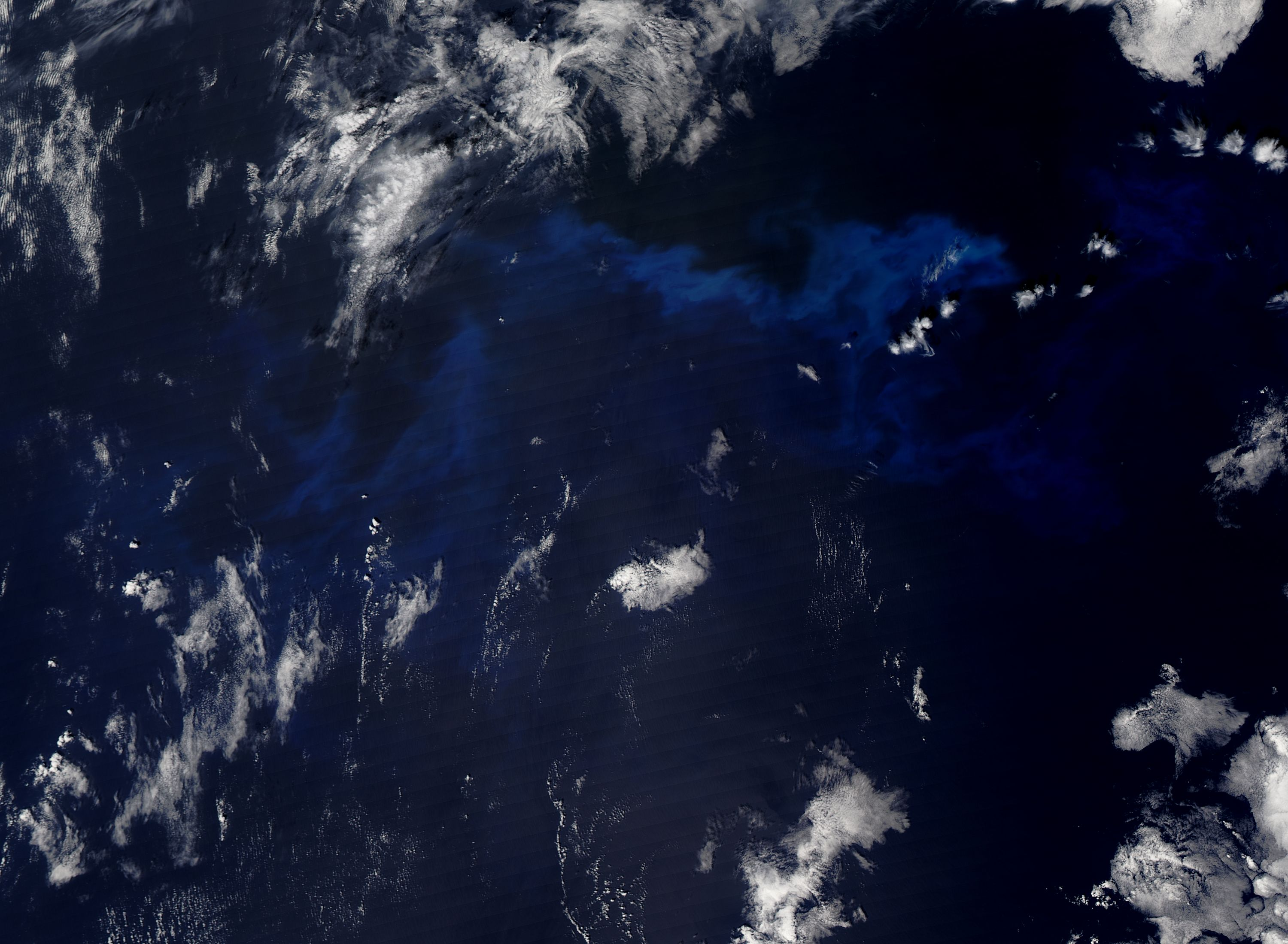 Phytoplankton bloom in the northern Pacific Ocean - related image preview