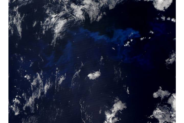 Phytoplankton bloom in the northern Pacific Ocean - selected image