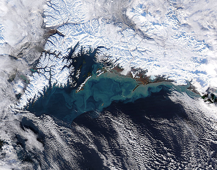 Sediment off southern Alaska - related image preview
