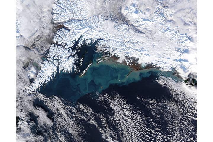 Sediment off southern Alaska - selected image