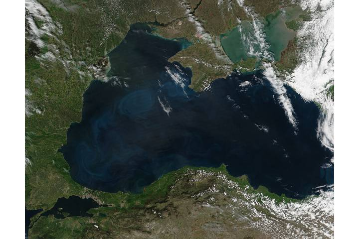 Phytoplankton bloom in the Black Sea - selected image