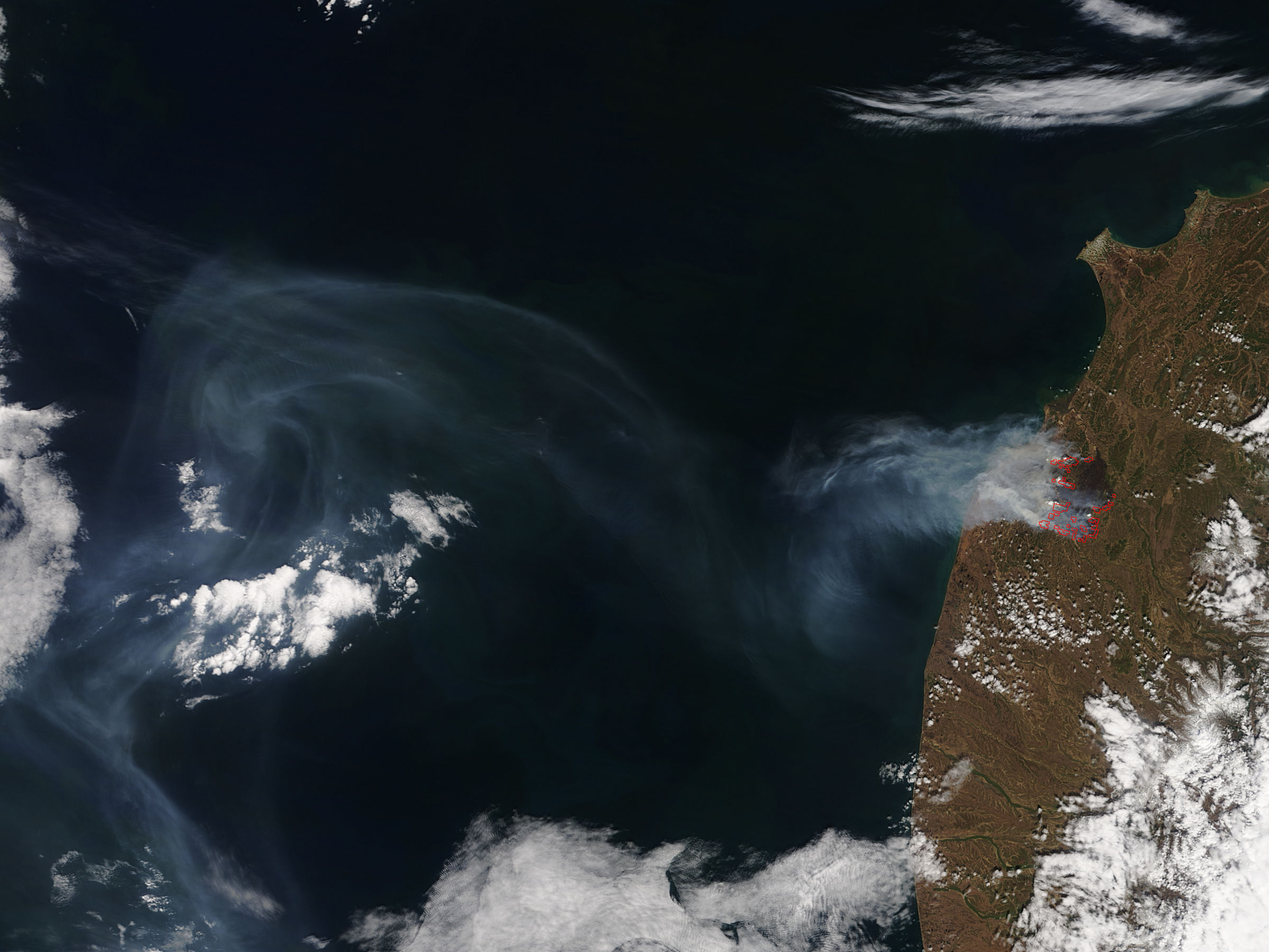 Wildfire in southwest Kamchatka - related image preview