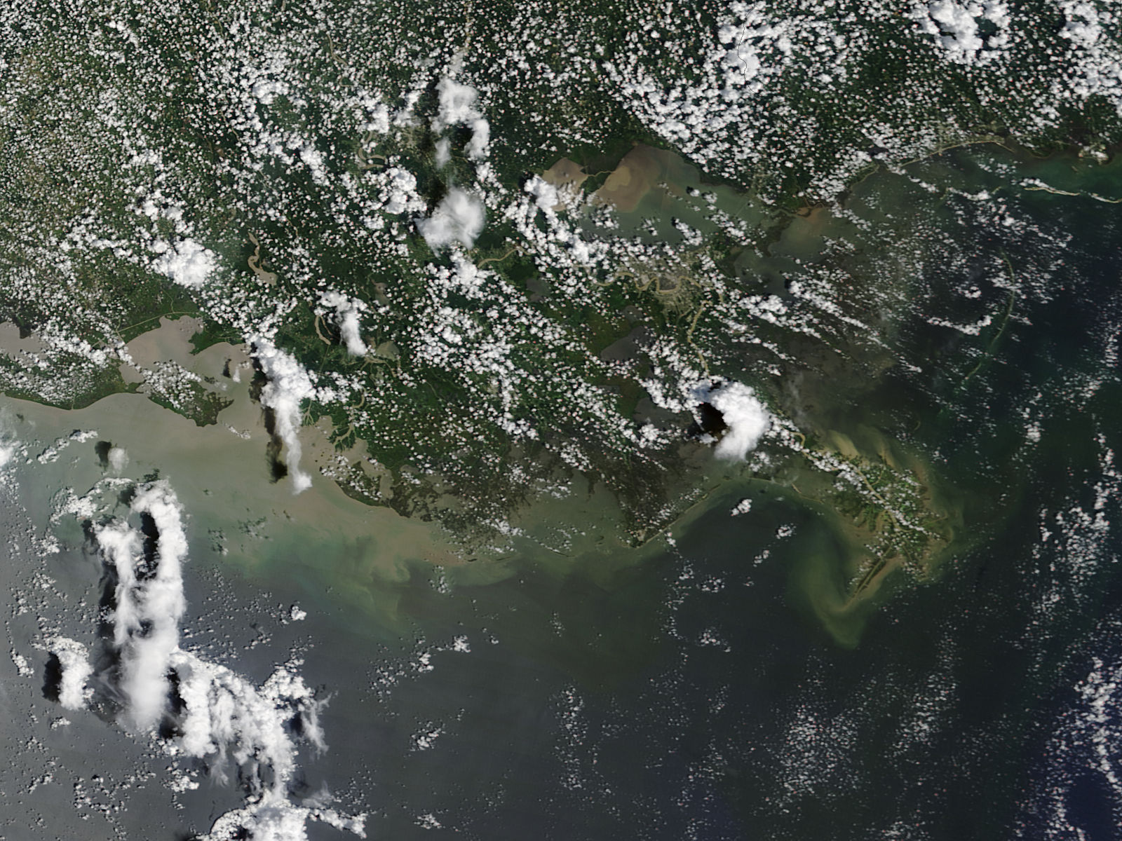 Sediment off Louisiana - related image preview