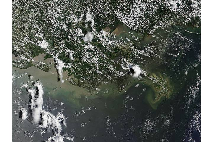 Sediment off Louisiana - selected image