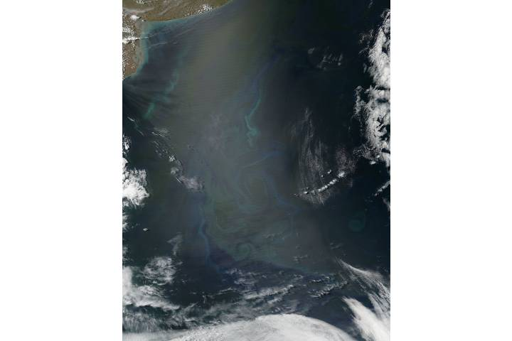 Phytoplankton bloom off Argentina - selected image