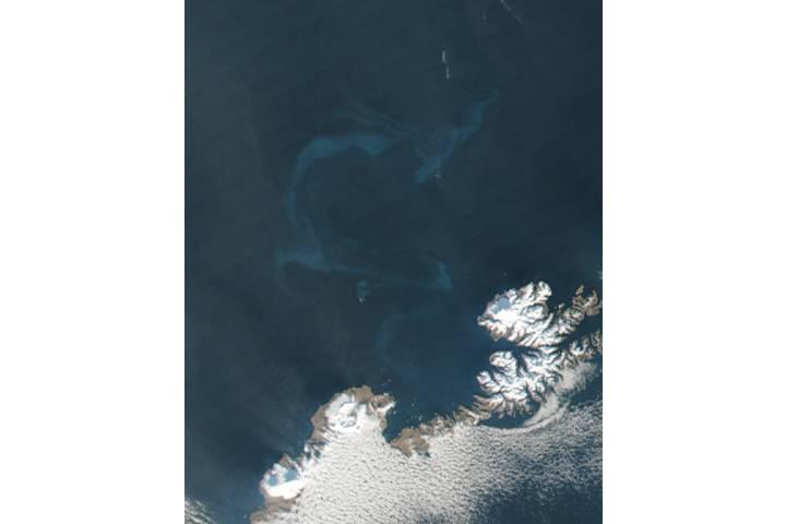 Ash in water from eruption of Bogoslof, Alaska - selected image