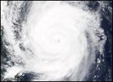 Typhoon Meari