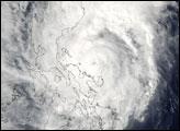 Typhoon Muifa