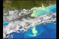 Phytoplankton Bloom in the Gulf of Mexico