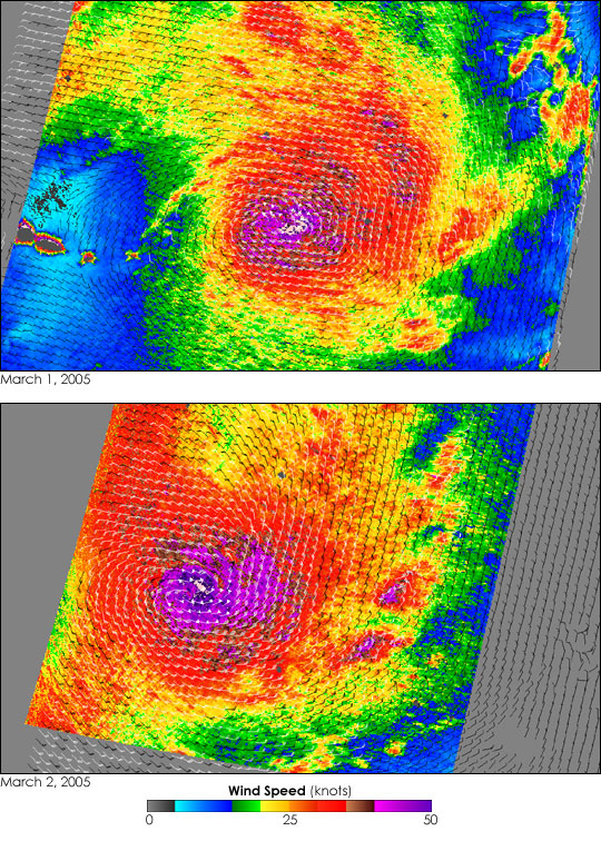 Tropical Cyclone Percy - related image preview