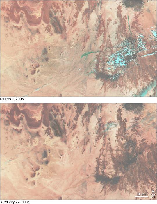 Floods in Algeria