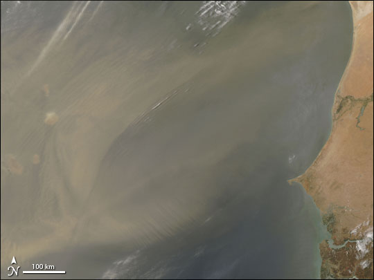 Dust Storm Off the Coast of Western Africa