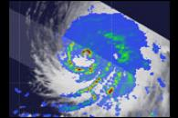 Typhoon Nesat