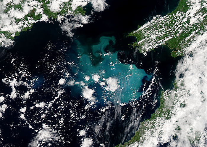 Phytoplankon bloom in the Celtic Sea - related image preview