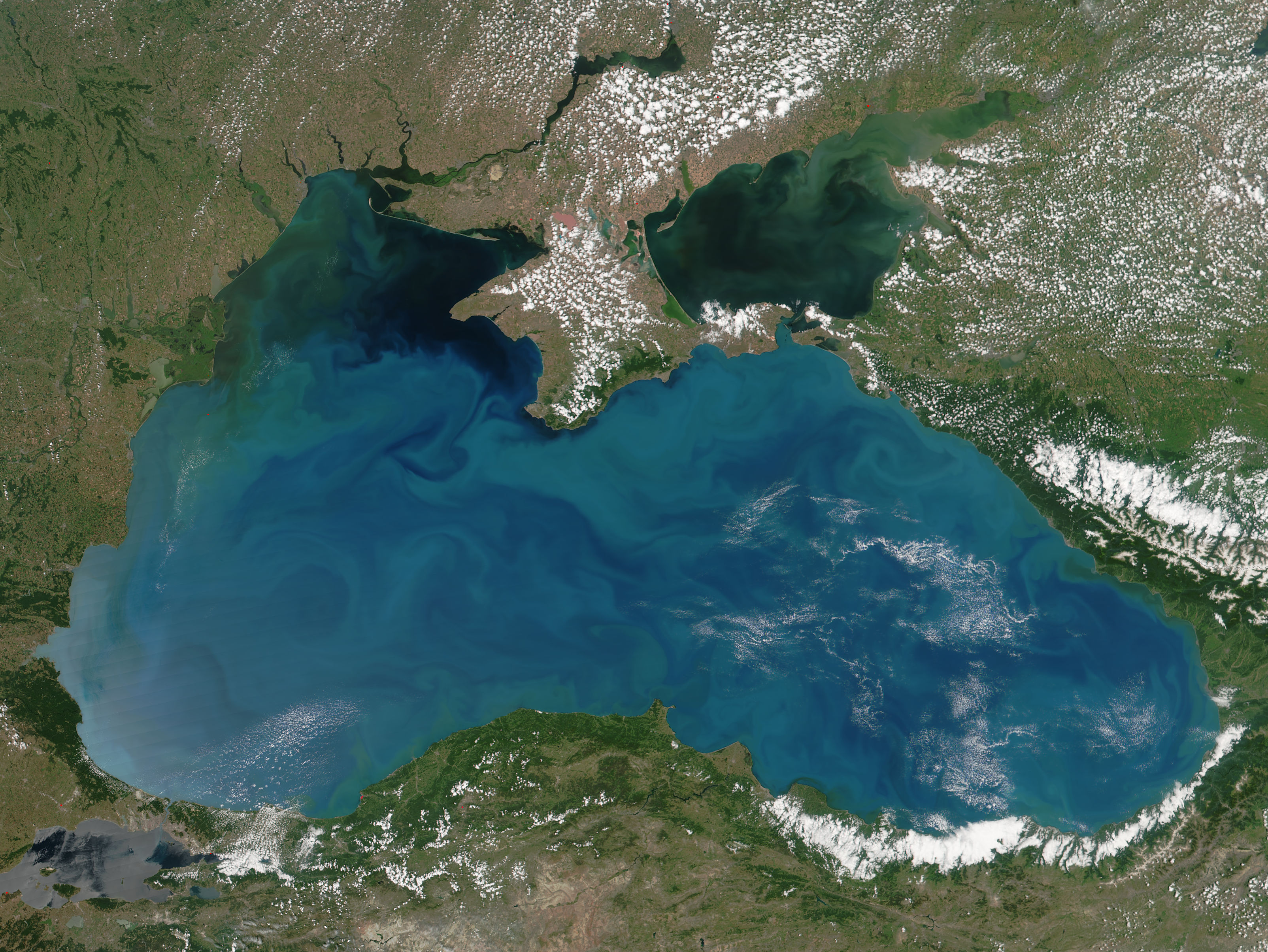 Phytoplankon blooms in the Black Sea - related image preview