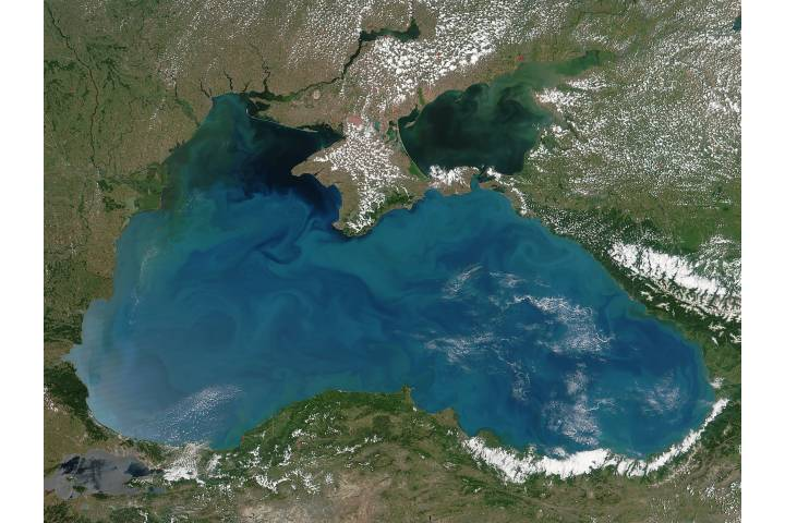Phytoplankon blooms in the Black Sea - selected image