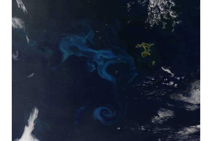 Phytoplankton bloom off Chatham Island, South Pacfic Ocean - selected image
