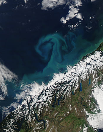 Phytoplankton bloom off South Island, New Zealand - related image preview