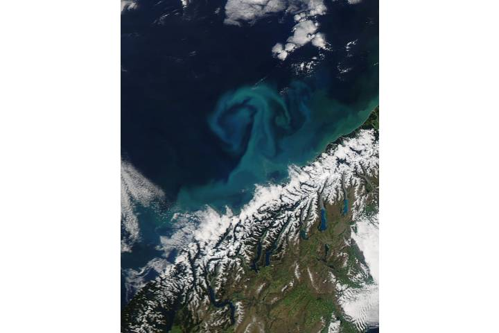 Phytoplankton bloom off South Island, New Zealand - selected image