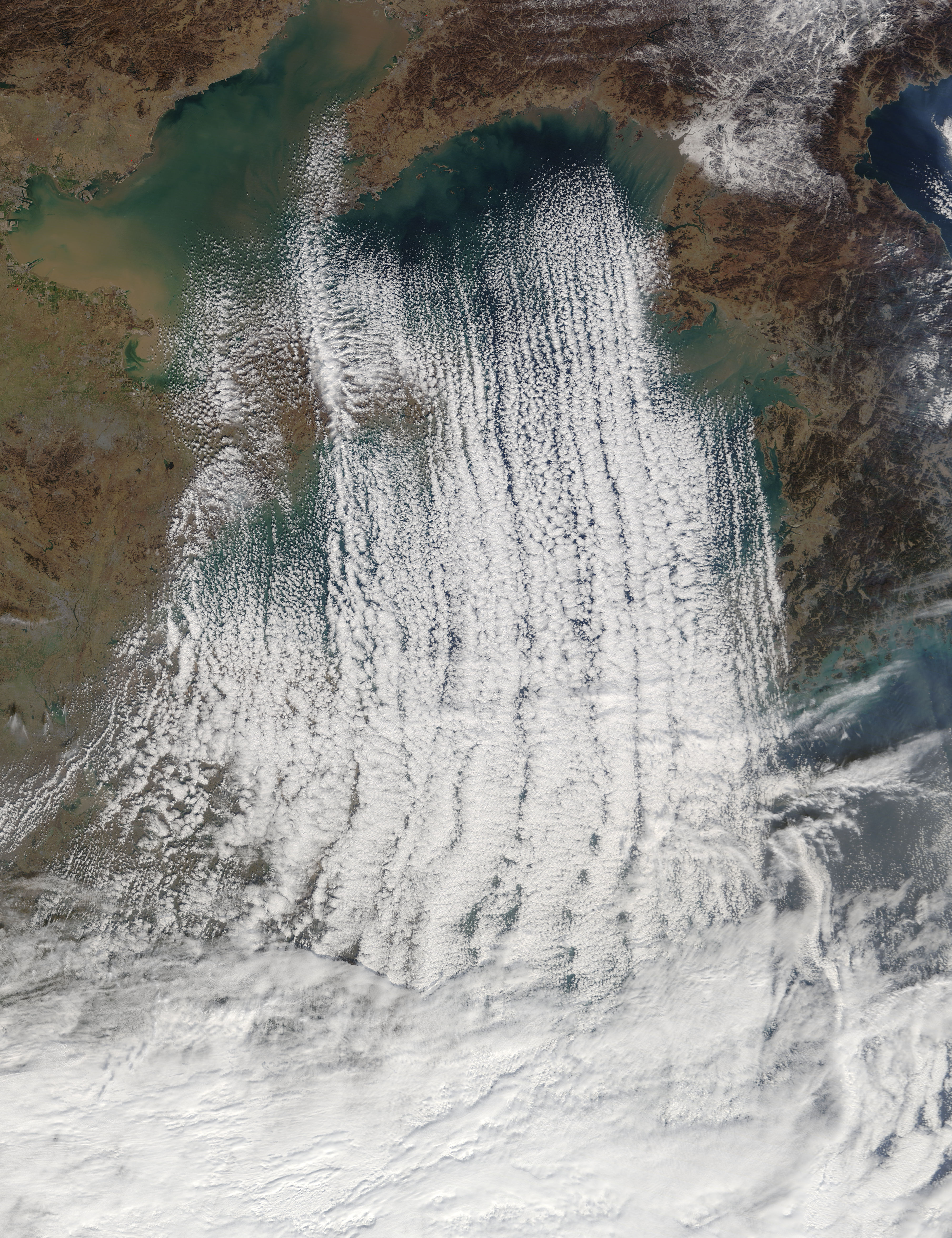 Cloud streets in the Yellow Sea - related image preview