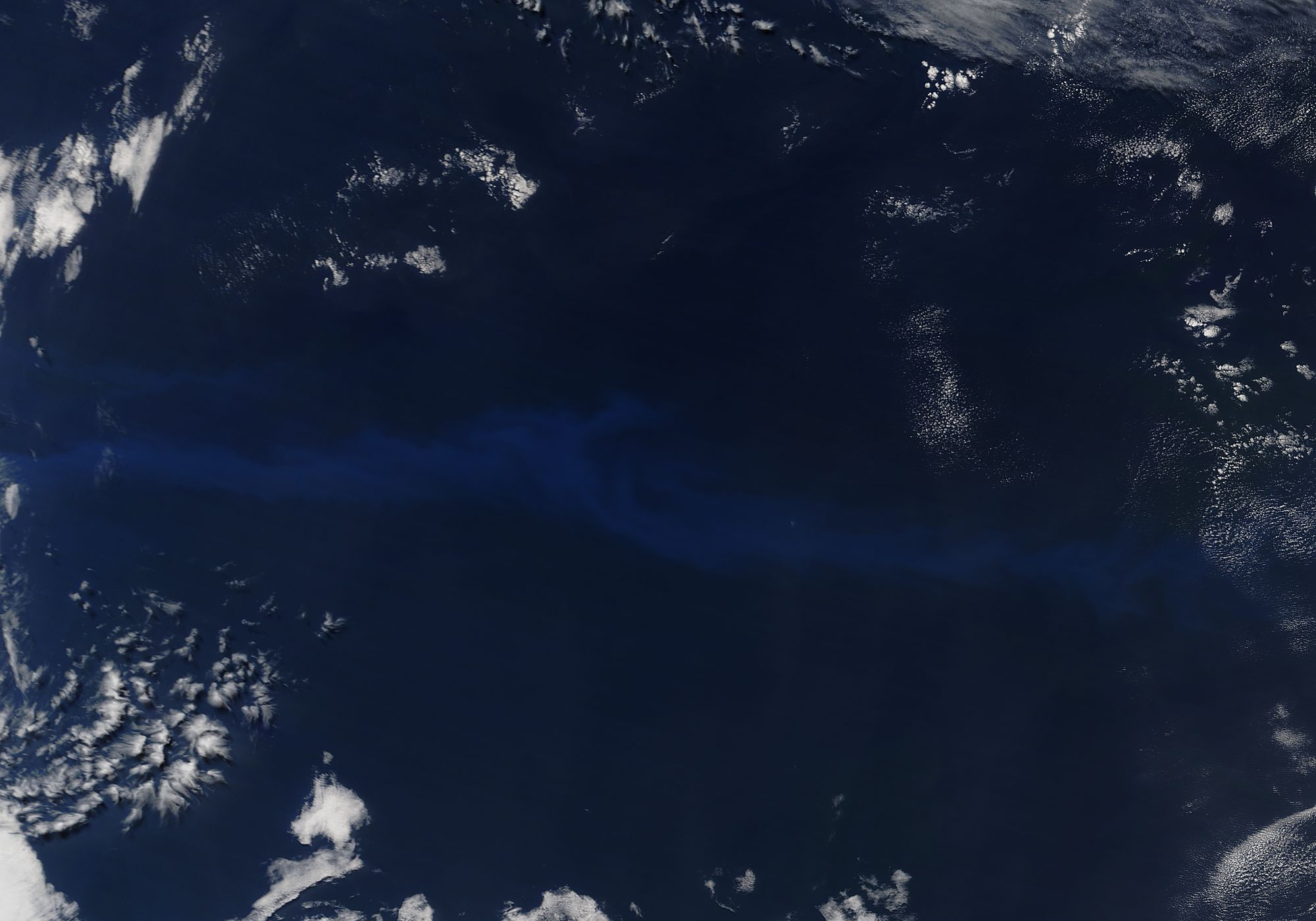 Phytoplankton bloom in the South Atlantic Ocean - related image preview