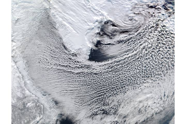 Cloud streets in the Labrador Sea - selected image