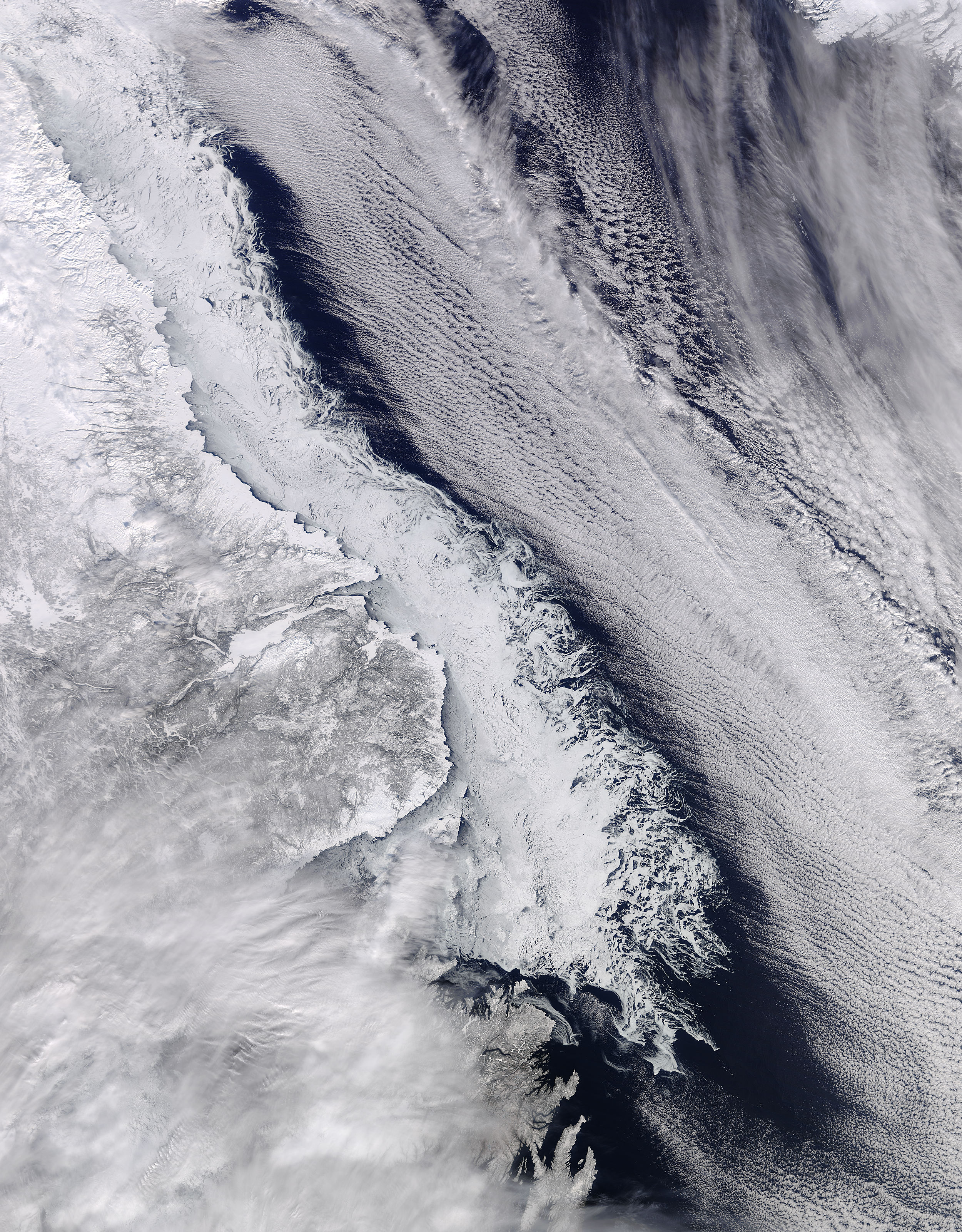 Sea ice along the coast of Labrador - related image preview