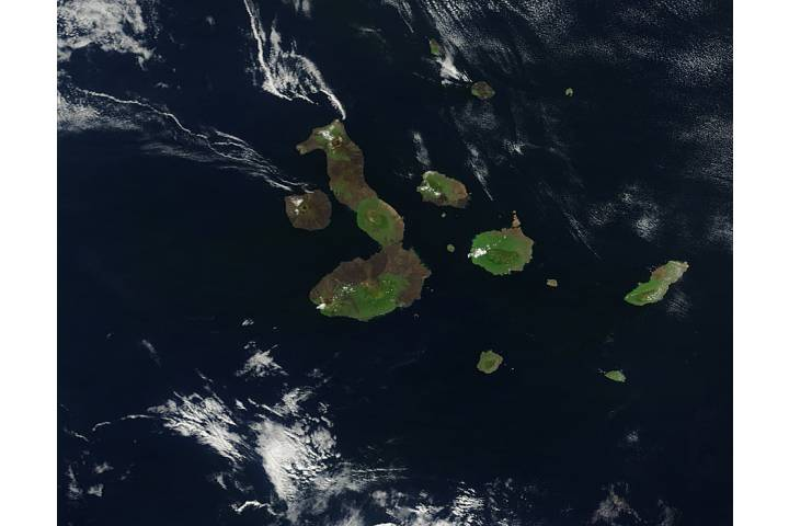 Galapagos Islands - selected image