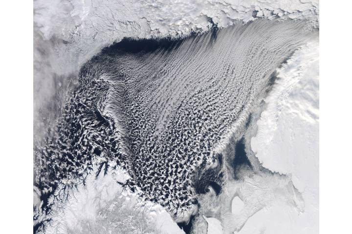 Cloud streets in the Barents Sea - selected image