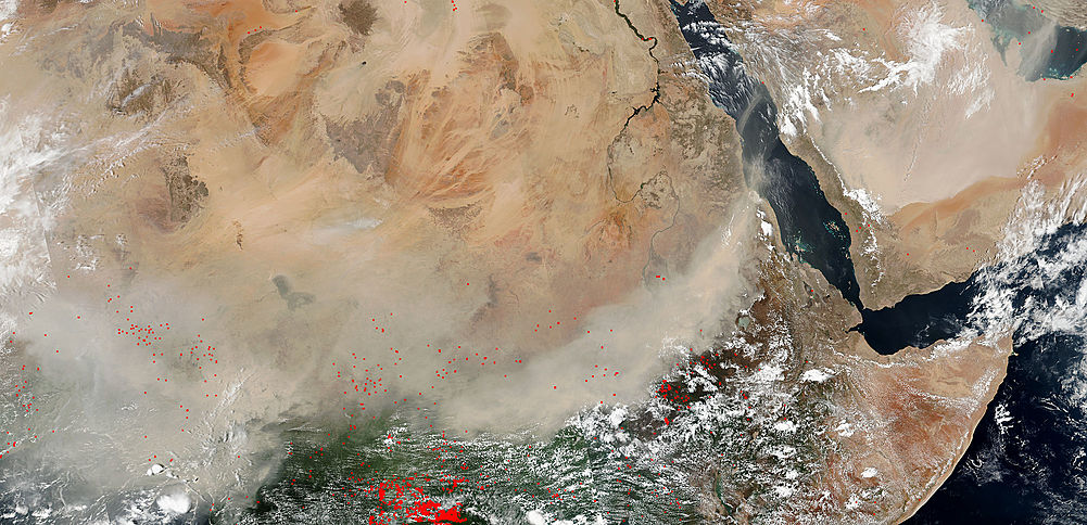 Dust storms across central Africa and the Arabian Peninsula - related image preview