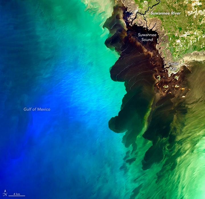 A Blackwater River Meets the Sea