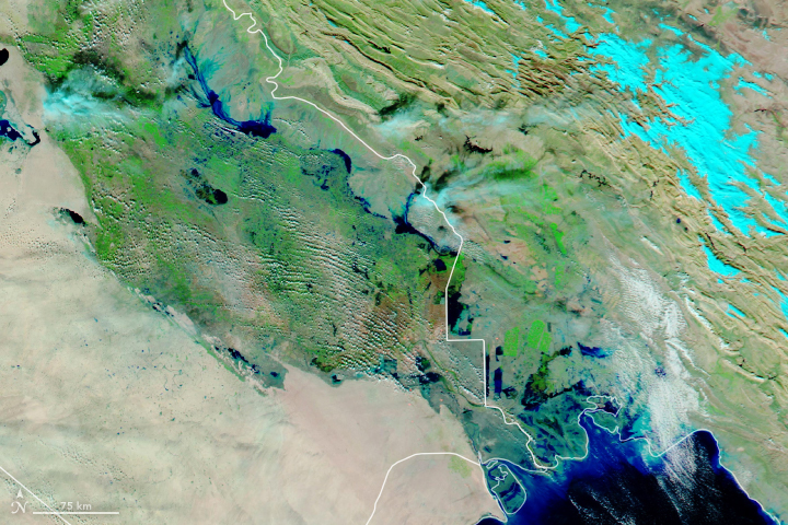 Floods Swamp Iraq - related image preview