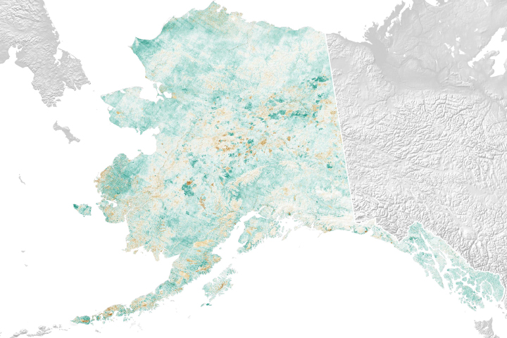 Alaska in Flux: Wildfire Recovery Paints Alaska Green