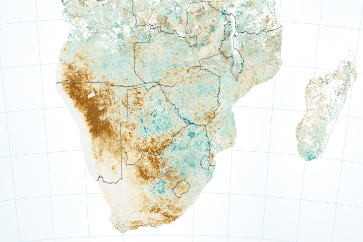 Drought Harms Corn Crops in Southern Africa